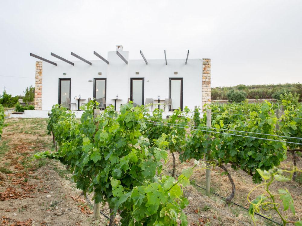 Bozcaada Esinti Otel - Cottage
